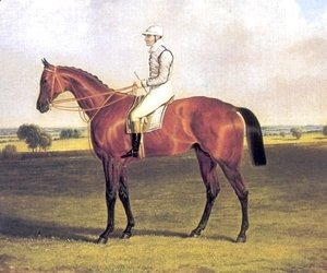 John Frederick Herring Snr - Little Wonder with Jockey Up 1840