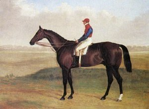 Lord Chesterfields Racehorse Don John