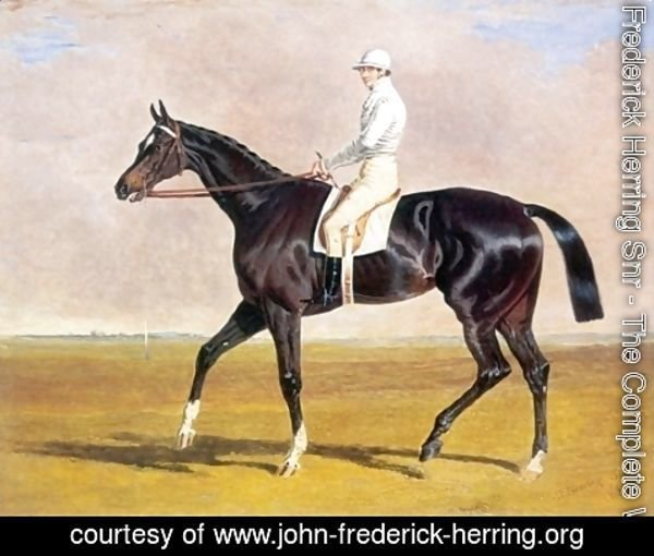 John Frederick Herring Snr - Lucetta with Jockey Up 1834