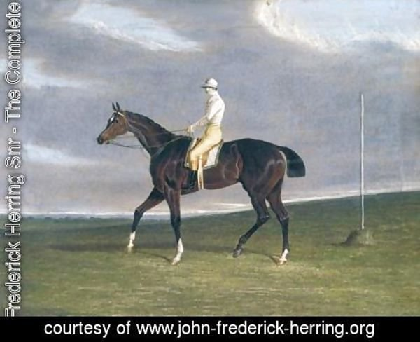 John Frederick Herring Snr - Lucetta with Robinson Up 1833