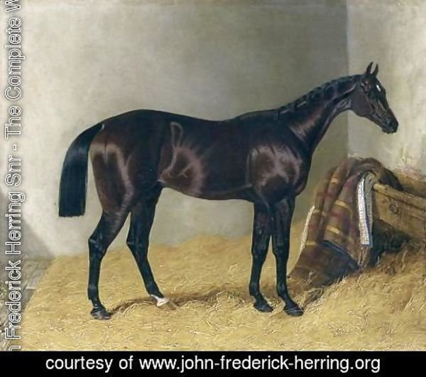 John Frederick Herring Snr - Mango In a Stable 1837