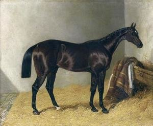 Mango In a Stable 1837