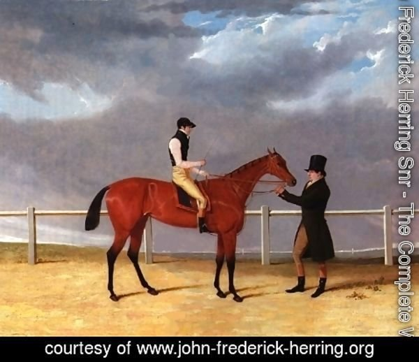 John Frederick Herring Snr - Matilda With Jockey Up