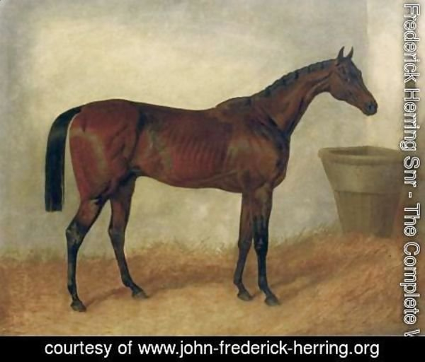 John Frederick Herring Snr - Merry Monarch A Bay Mare In a Stable 1845