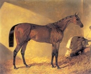John Frederick Herring Snr - Merry Monarch in a Stall