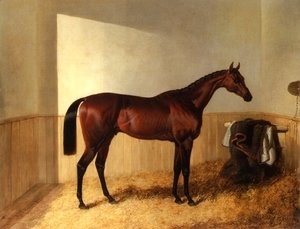 John Frederick Herring Snr - Merry Monarch in Stable