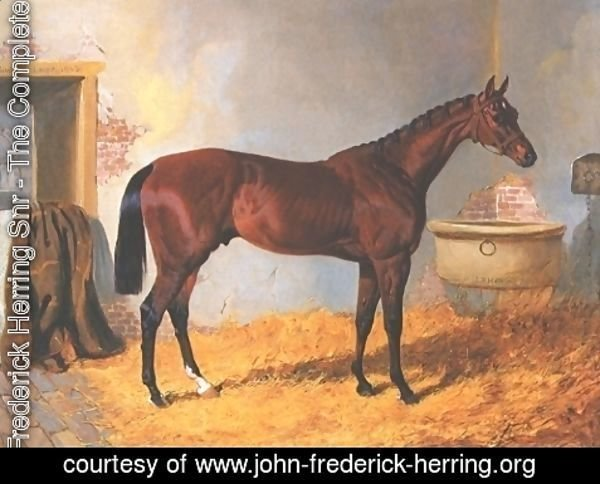 John Frederick Herring Snr - Nutwith