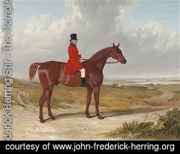 John Frederick Herring Snr - Portrait of Mr. Daniel Haigh, Master of the Old Surrey Hunt