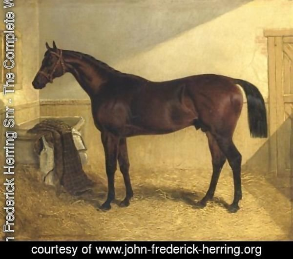 John Frederick Herring Snr - Rockingham Winner 1833 St. Leger 1833