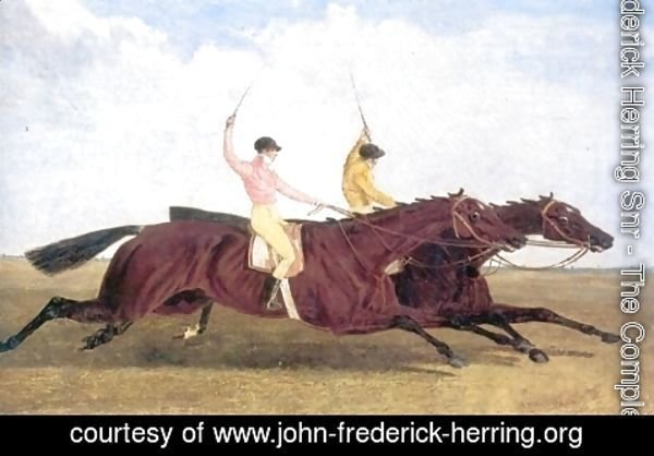 John Frederick Herring Snr - Satirist Beating Coronation in Horserace