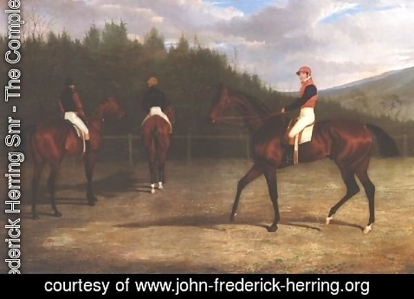 John Frederick Herring Snr - Start Of The Goldwood Cup 1831