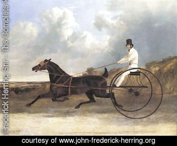 The American Trotter Ratler 1834