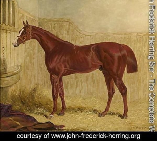 John Frederick Herring Snr - The Colonel