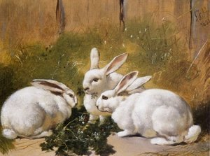 Three White Rabbits 1851