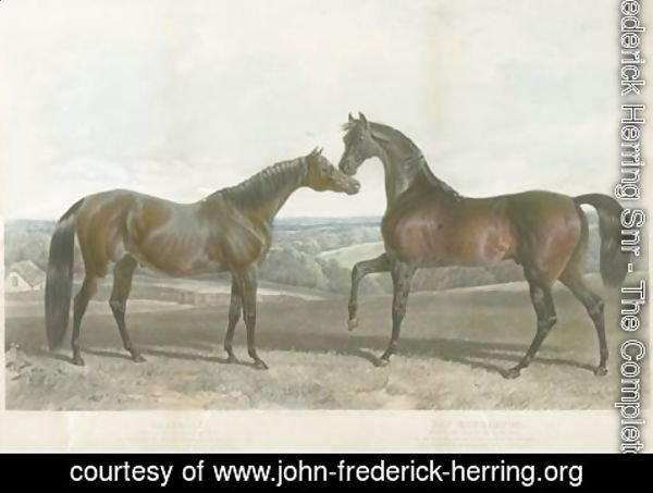 John Frederick Herring Snr - Barbelle, bred by Mr. Vansittant and Bay Middleton, bred by the Earl of Jersey