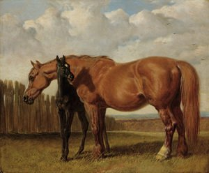 A chestnut mare with her foal in a paddock