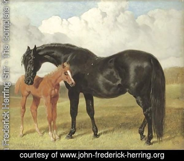 John Frederick Herring Snr - A mare and foal in a landscape