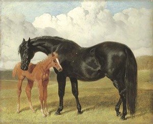 A mare and foal in a landscape