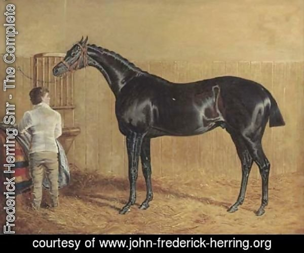 John Frederick Herring Snr - A racehorse in a stable with a groom
