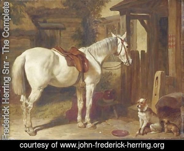 John Frederick Herring Snr - A saddled grey pony and dogs outside an inn