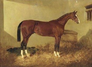 John Frederick Herring Snr - Aristides, a bay colt, in a loosebox