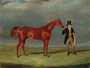 Bedlamite, a chestnut racehorse held by his trainer, in an extensive landscape