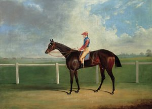 Bessy Bedlam, a bay racehorse with T. Nicholson up, on a racecourse