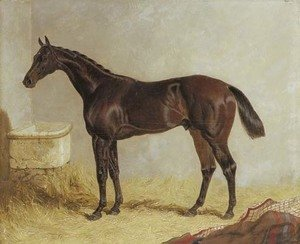 John Frederick Herring Snr - Birmingham, winner of the 1830 St. Leger Stakes, in a stable