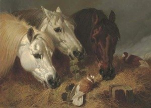 John Frederick Herring Snr - Horses feeding with two ornamental pigeons at a manger