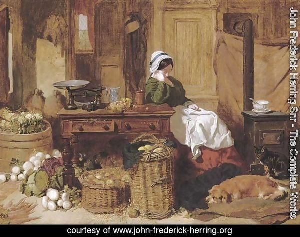 Jennie asleep at a kitchen table, surrounded by fruit and vegetables, with two dogs and a cat in front of the stove at her feet