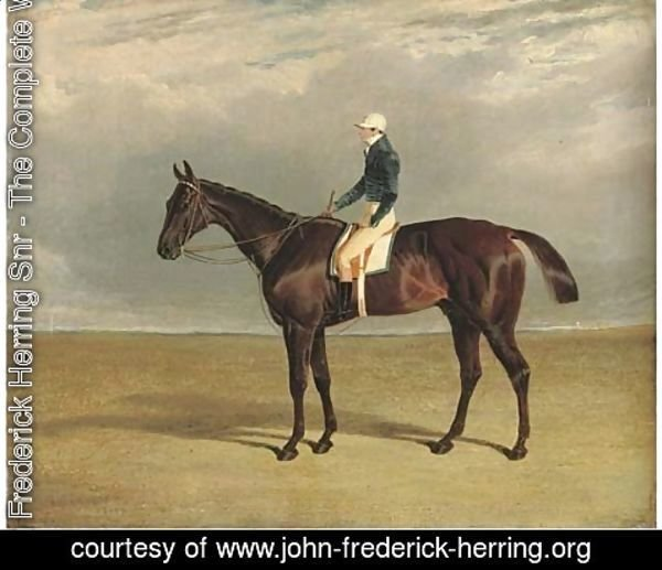 John Frederick Herring Snr - Margrave with J. Robinson up, a racecourse beyond