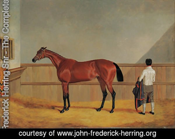 John Frederick Herring Snr - Matilda, a bay racehorse with her groom in a loosebox