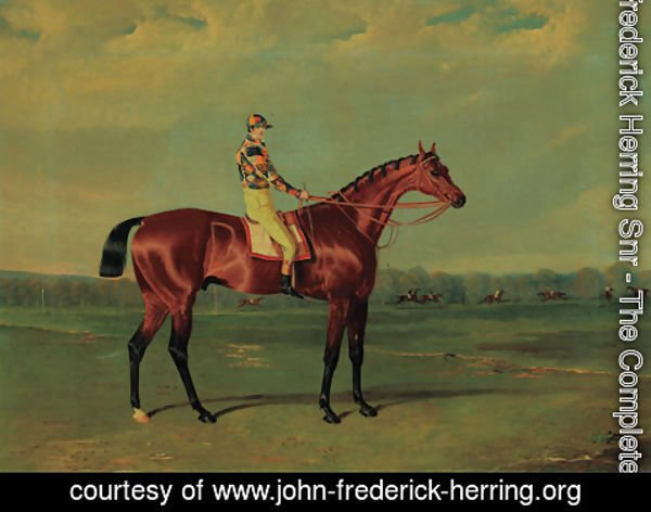 John Frederick Herring Snr - Memnon, a bay racehorse with William Scott up in the colours of Richard Watt, on Doncaster racecourse