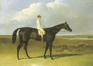 John Frederick Herring Snr - Mr O'Brien's Jonathan Wild, with jockey up