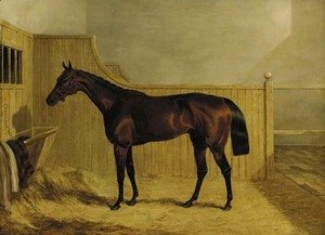 John Frederick Herring Snr - Mr Ridsdale's Bloomsbury, winner of the 1839 Derby, in a stable