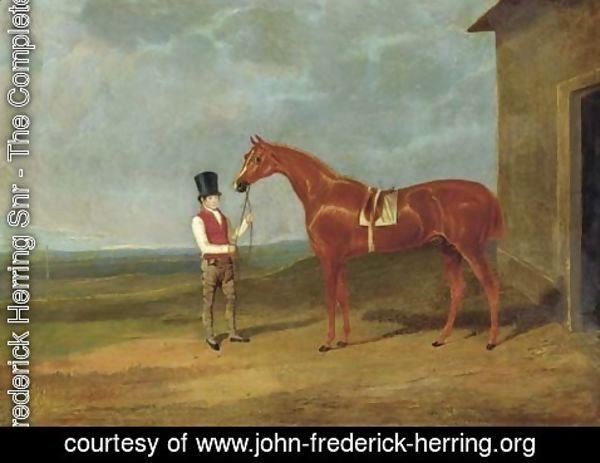 John Frederick Herring Snr - Mr. Dixon's Mountaineer, a chestnut colt, held by a groom outside a stable