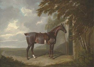 John Frederick Herring Snr - Mr. H.M. Greaves's liver chestnut hunter, tethered to a gate at Page Hall, Yorkshire