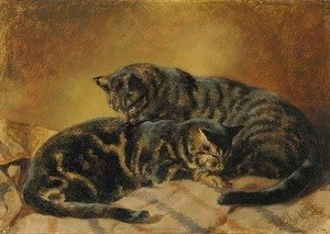 John Frederick Herring Snr - Two cats