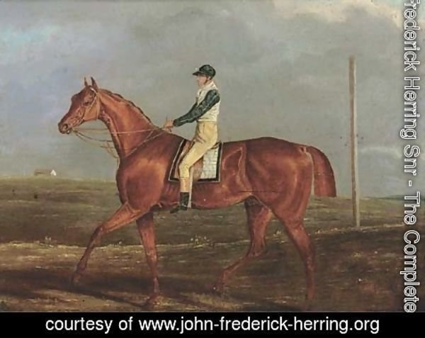 John Frederick Herring Snr - Monreith, with Tom Shepherd up