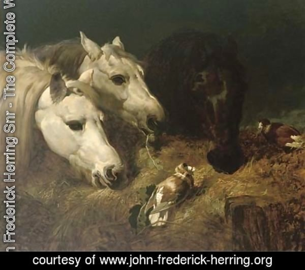John Frederick Herring Snr - Sharing the hay