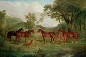 John Frederick Herring Snr - The Streatlam Stud, Mares and Foals