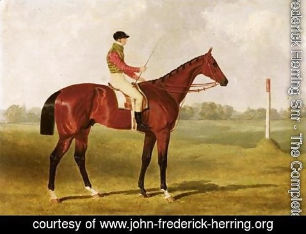 John Frederick Herring Snr - Phosphorus, A Bay Racehorse With George Edwards Up, On A Racecourse