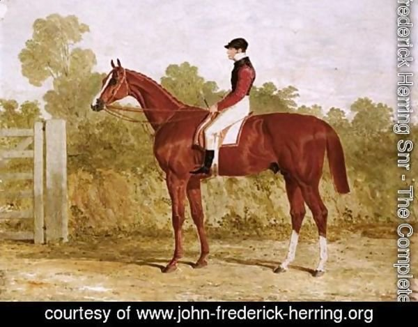 John Frederick Herring Snr - Elis, A Chestnut Racehorse With John Day Snr. Up, By A Gate