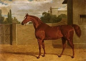 John Frederick Herring Snr - Comus, A Chestnut Racehorse In A Stable Yard