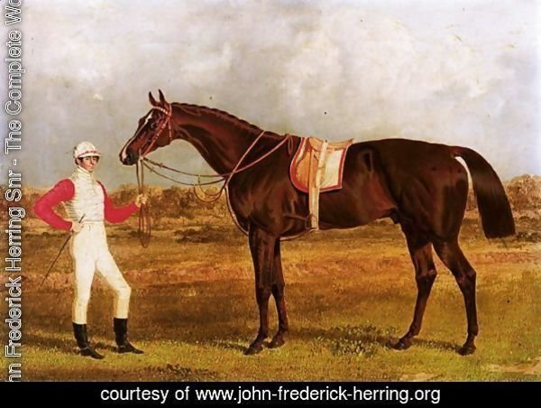 Euclid, A Chestnut Racehorse Held By His Jockey, Patrick Conolly, In A Landscape