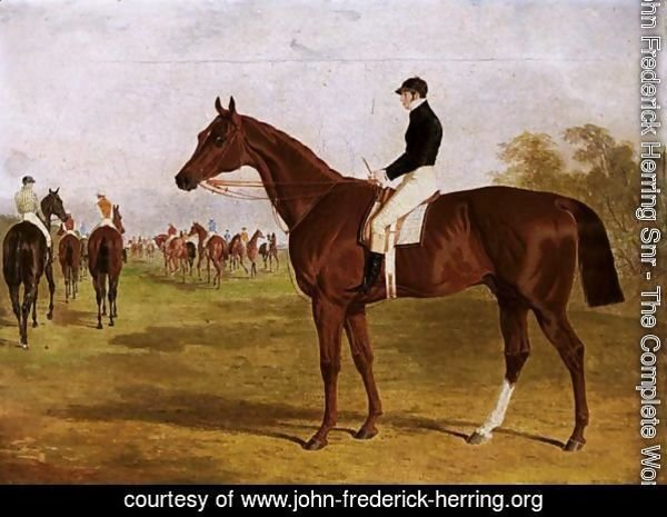Mundig, A Chestnut Colt With William Scott Up, At The Start For The 1835 Derby