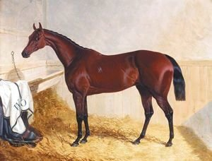 John Frederick Herring Snr - Mr William Orde's Bay Filly Bees-Wing In A Loose Box