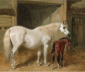 John Frederick Herring Snr - A Grey Mare And Her Foal In A Loose Box