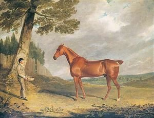 John Frederick Herring Snr - A Chestnut Hunter And Groom In A Landscape