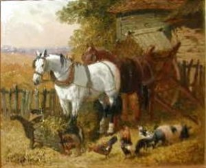 Horses with chickens and a pig